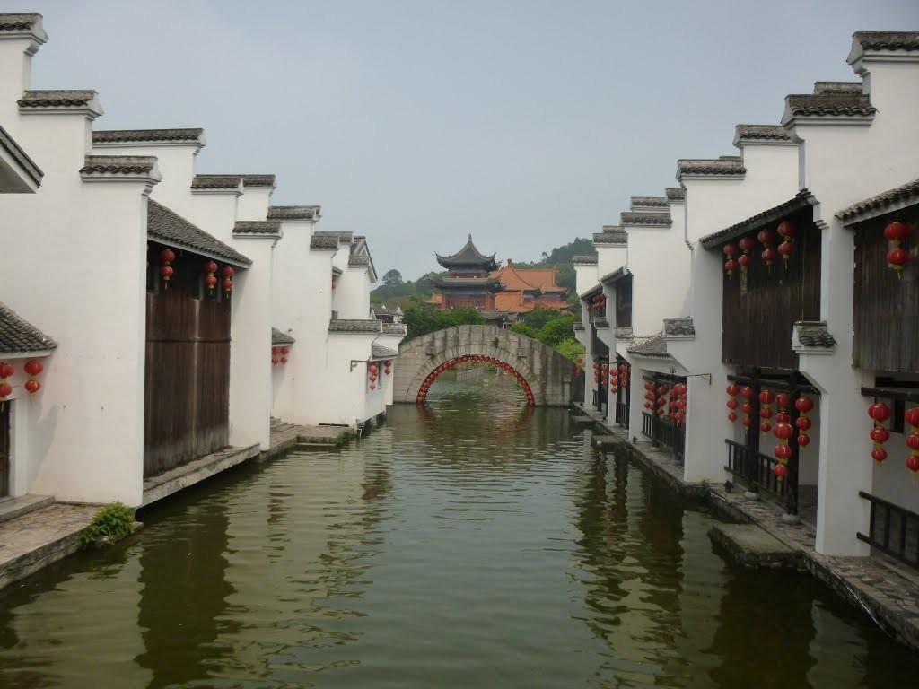 scholarship in guangdong
